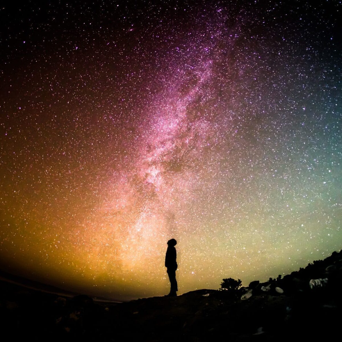 4. Cosmos - Y8CKB0O8C2